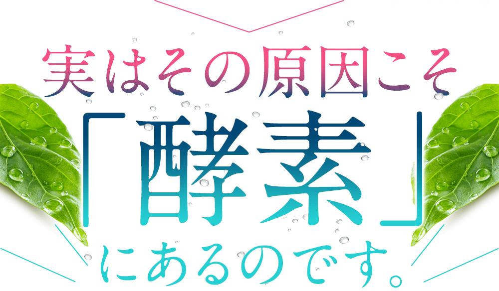 f:id:jitumatsu:20180909055117p:plain