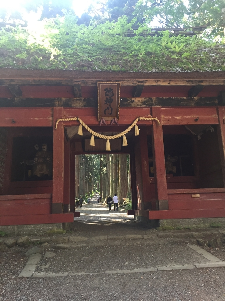 戸隠神社 随神門と杉並木
