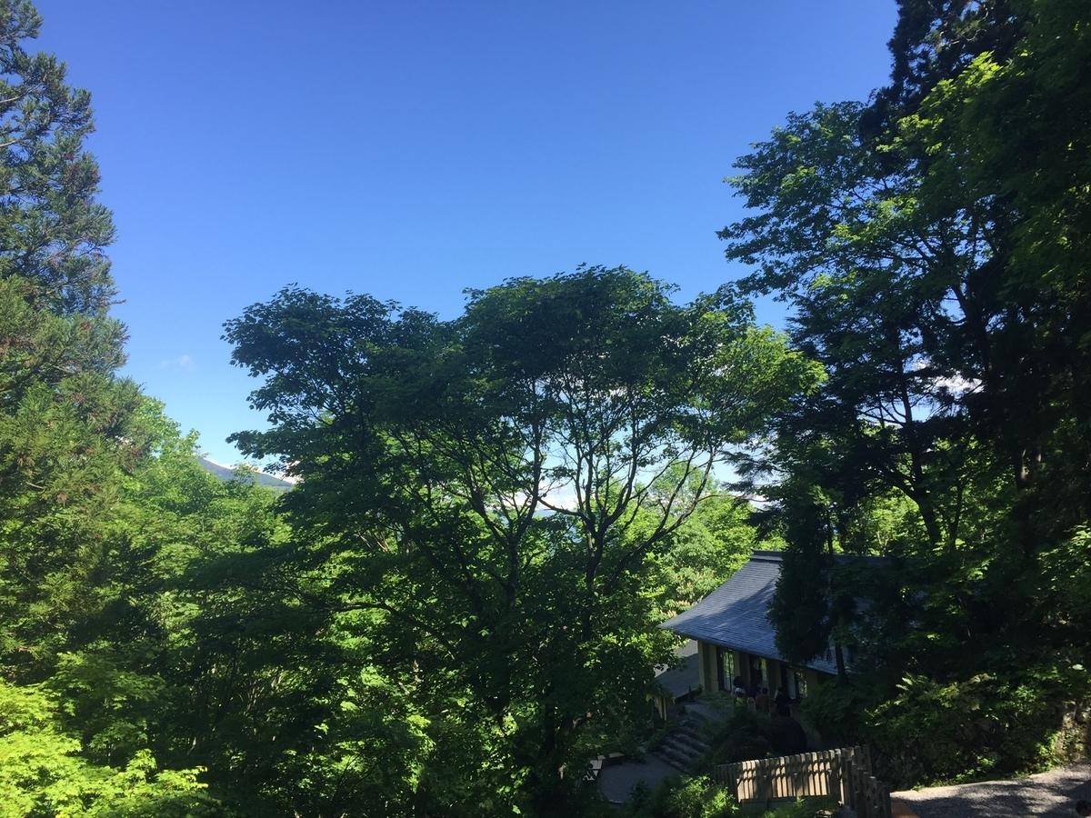 戸隠神社奥社からみる景色