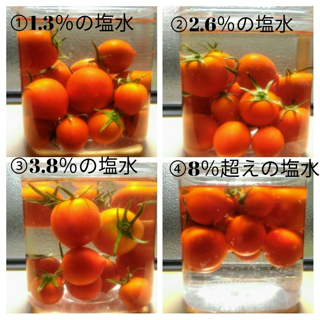 f:id:jiyu-kenkyu-kazoku:20190826135720j:plain