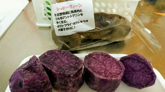 f:id:jiyu-kenkyu-kazoku:20191013160940j:image