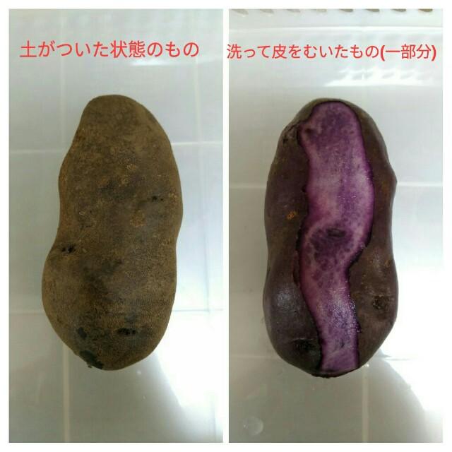 f:id:jiyu-kenkyu-kazoku:20191013161001j:image