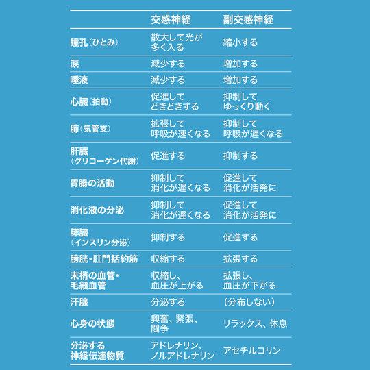 f:id:jiyuukeishiki:20190806000218j:plain