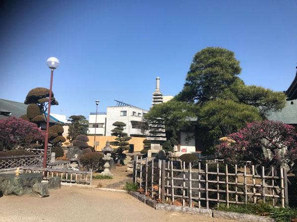 桶川 大雲寺 庭園