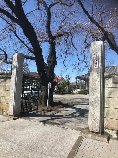 善福寺の山門