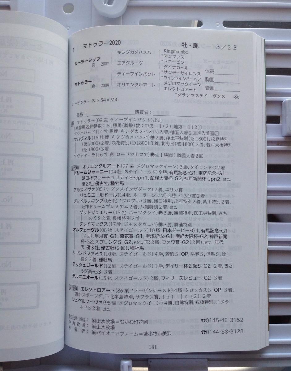 f:id:jnsk_jojo:20210804043028j:plain