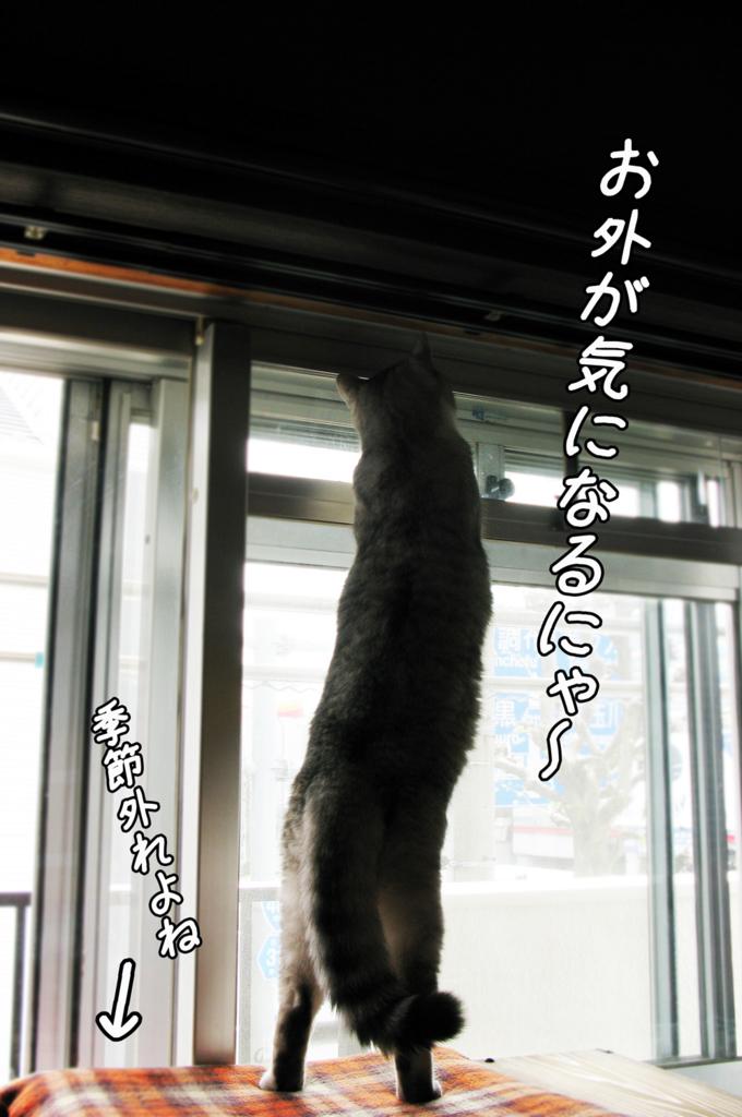 f:id:jojomiguel37:20170427222045j:plain