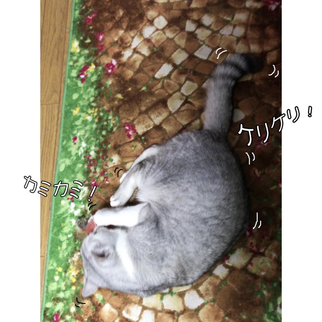 f:id:jojomiguel37:20180412112701j:plain