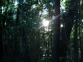 檻から僅かに垣間見える太陽