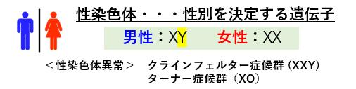 f:id:jonny1205:20210412170705p:plain