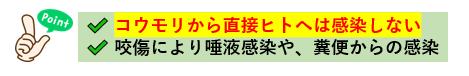 f:id:jonny1205:20210603091830p:plain