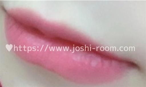 f:id:joshi_room:20190913220745j:image