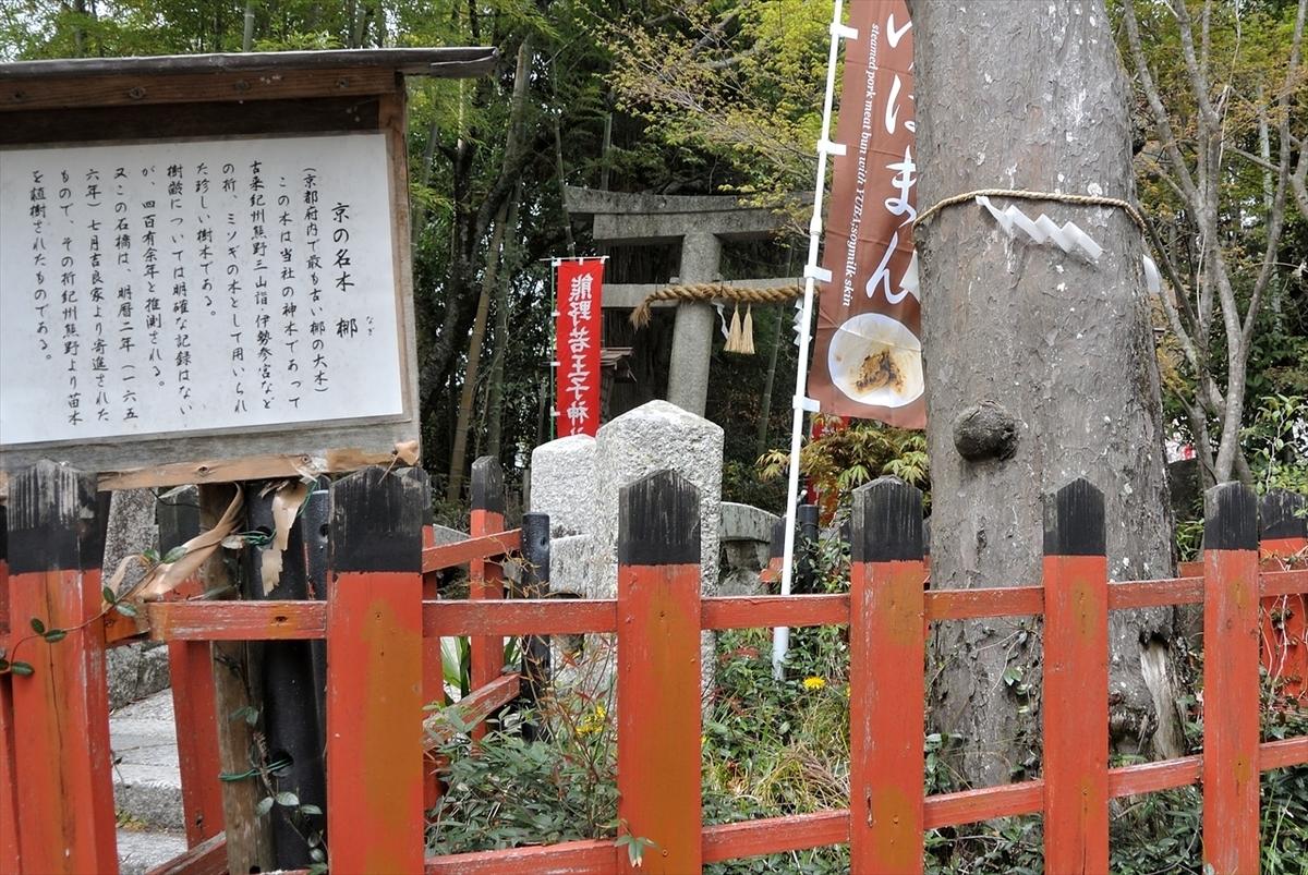 f:id:jotoyumekoi:20200201213047j:plain