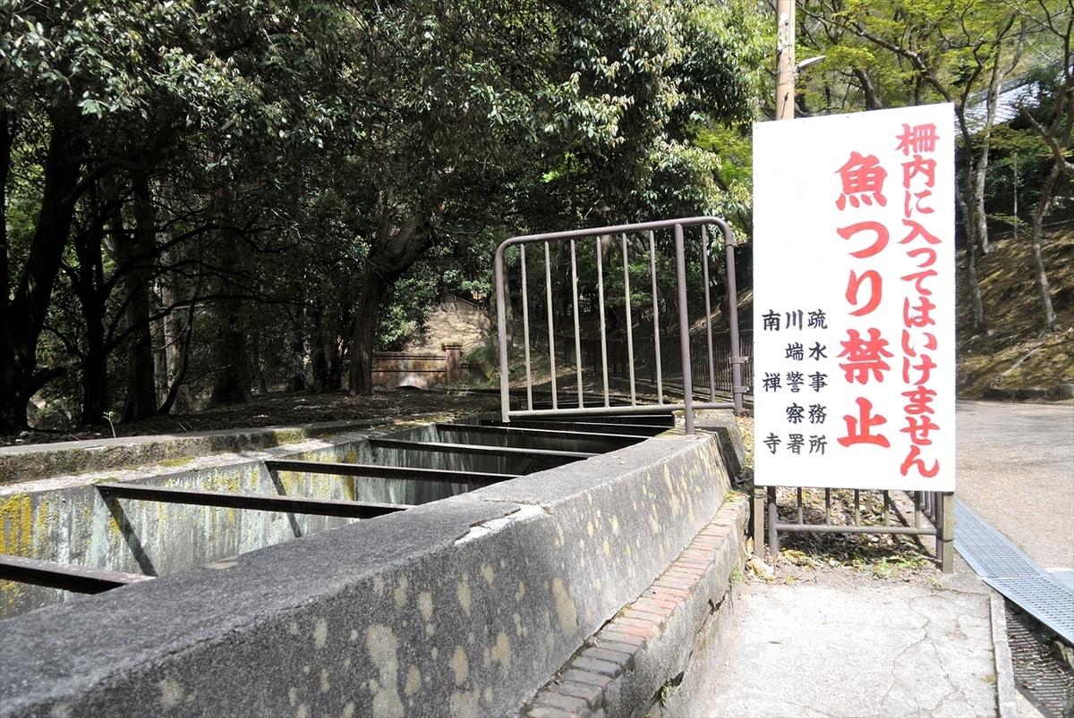 f:id:jotoyumekoi:20200401021619j:plain