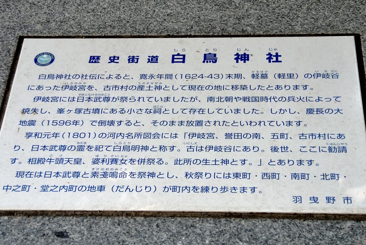 f:id:jotoyumekoi:20201102184623j:plain