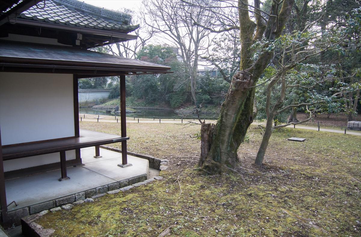 f:id:jotoyumekoi:20201201003444j:plain