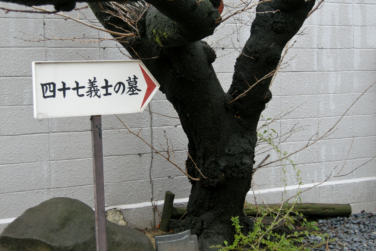 f:id:jotoyumekoi:20201203204810j:plain