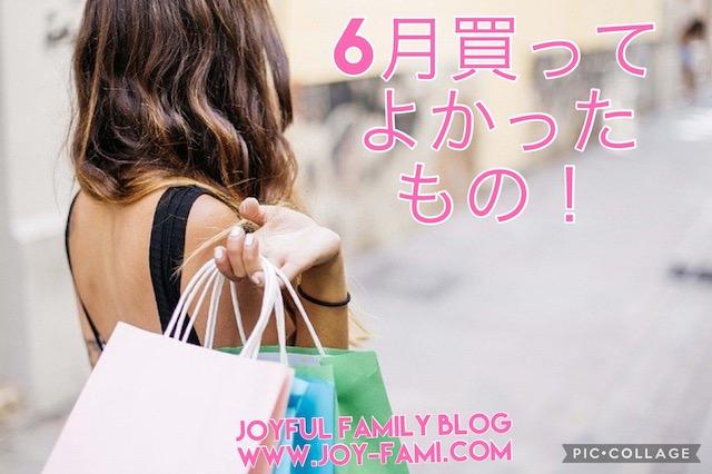 f:id:joyfulfamilyblog:20210701213311j:plain