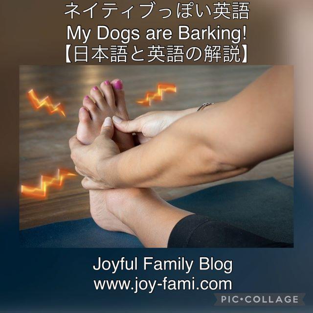 f:id:joyfulfamilyblog:20210719210735j:plain