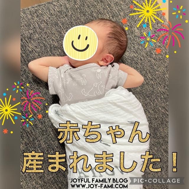 f:id:joyfulfamilyblog:20210807214835j:plain