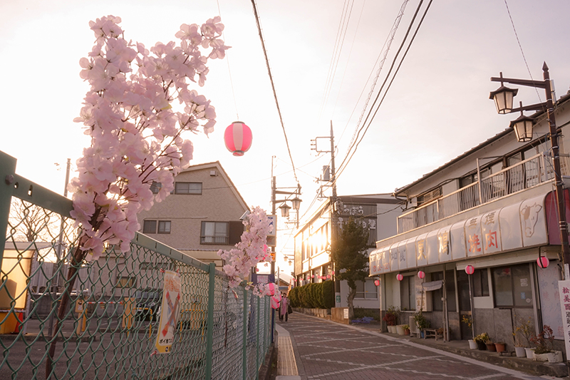 f:id:jp-photo-spot:20180530121153j:plain