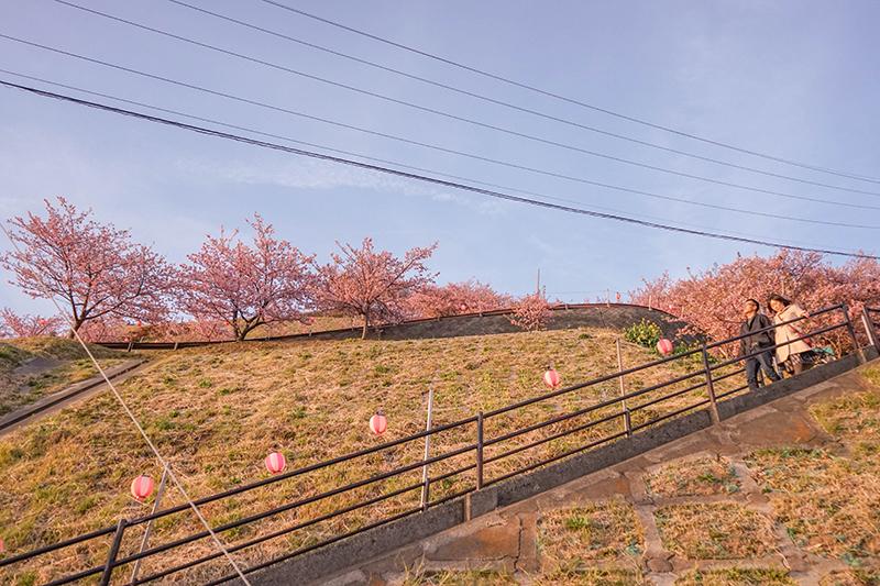 f:id:jp-photo-spot:20180530121444j:plain