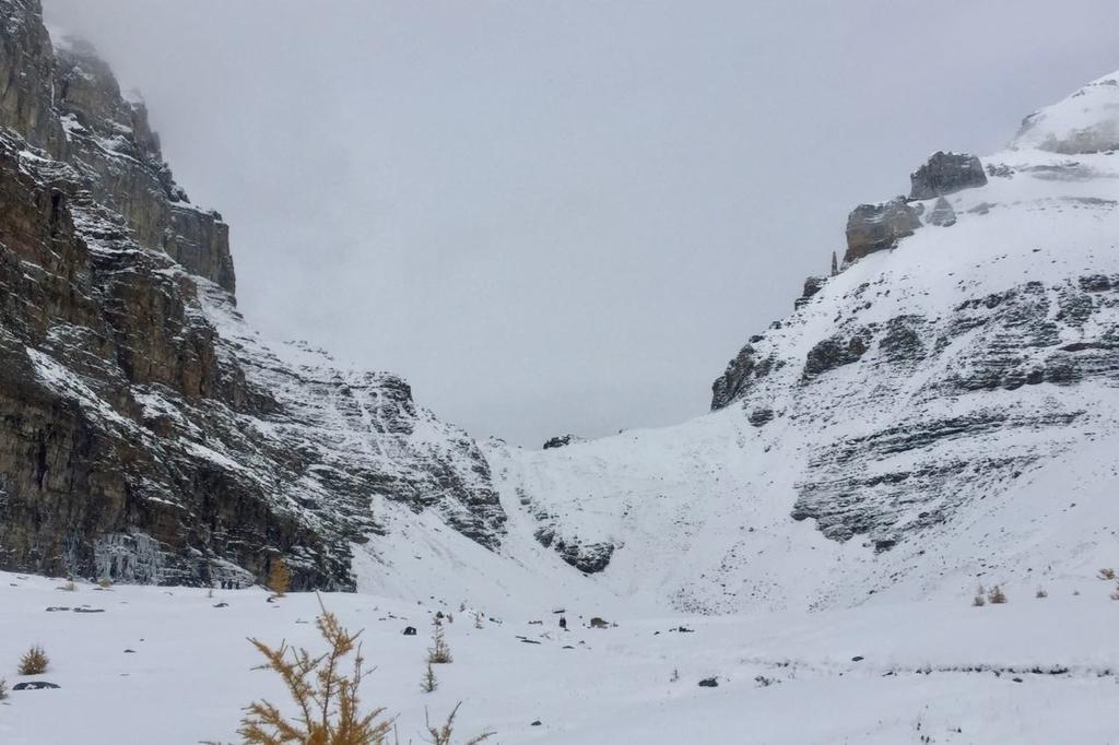雪に覆われたバンフ国立公園センチネルパスの山