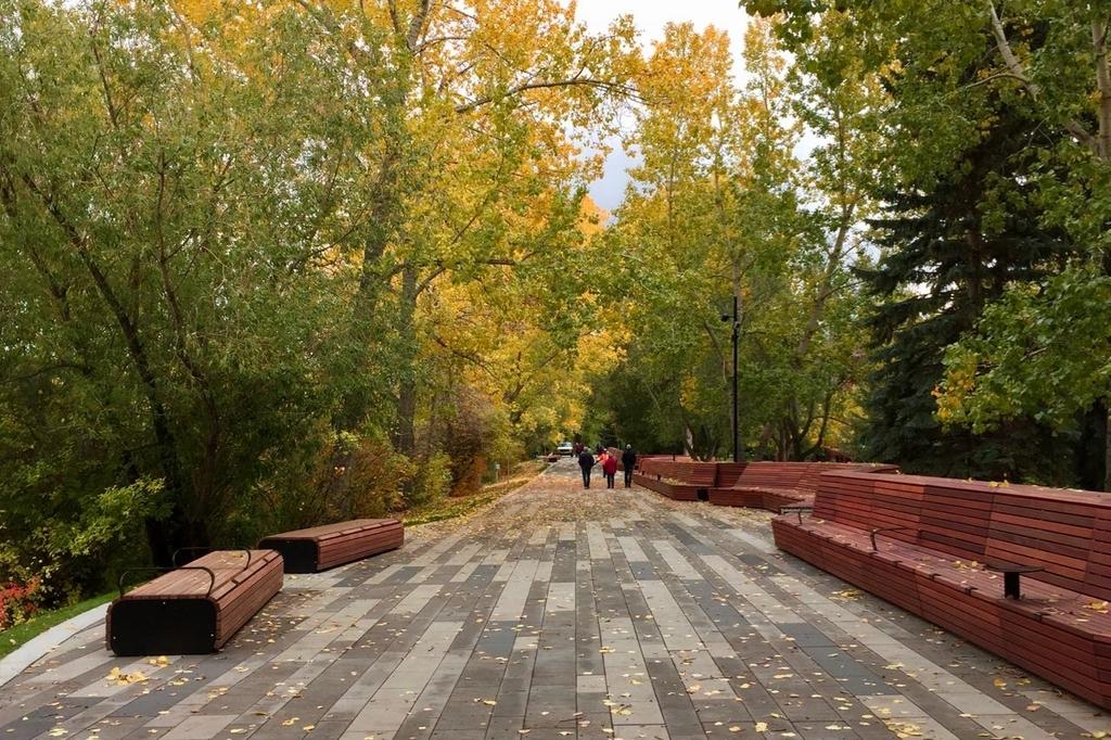 カルガリーのプリンセスアイランド。右側にベンチが遊歩道沿いにあって両側から黄葉した木々が遊歩道に覆いかぶさる。