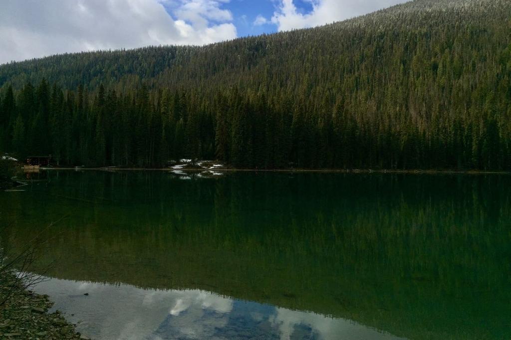 カナダのヨーホー国立公園にあるエメラルドレイク