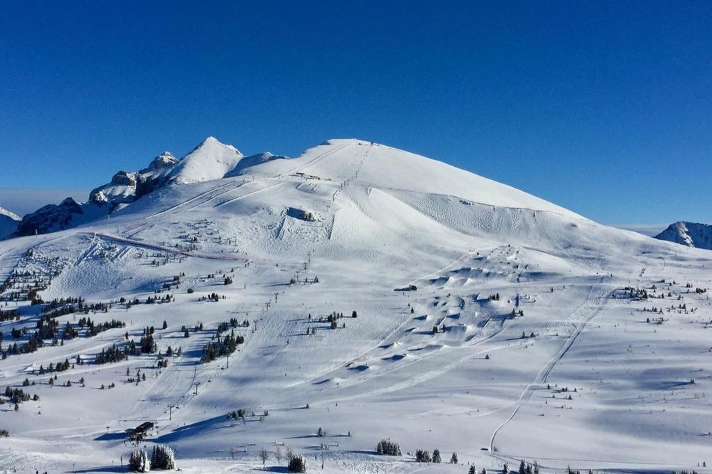 美しい青空と真っ白な雪山