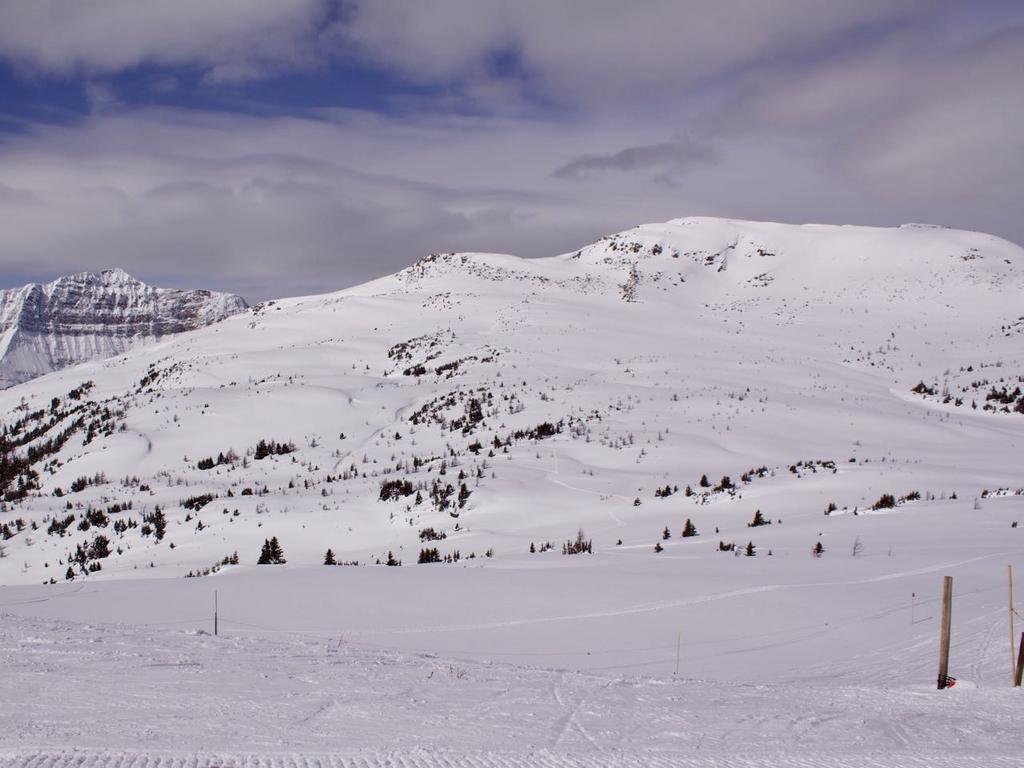 なだらかな雪山に歩いて登ったような足跡と滑った跡が見える