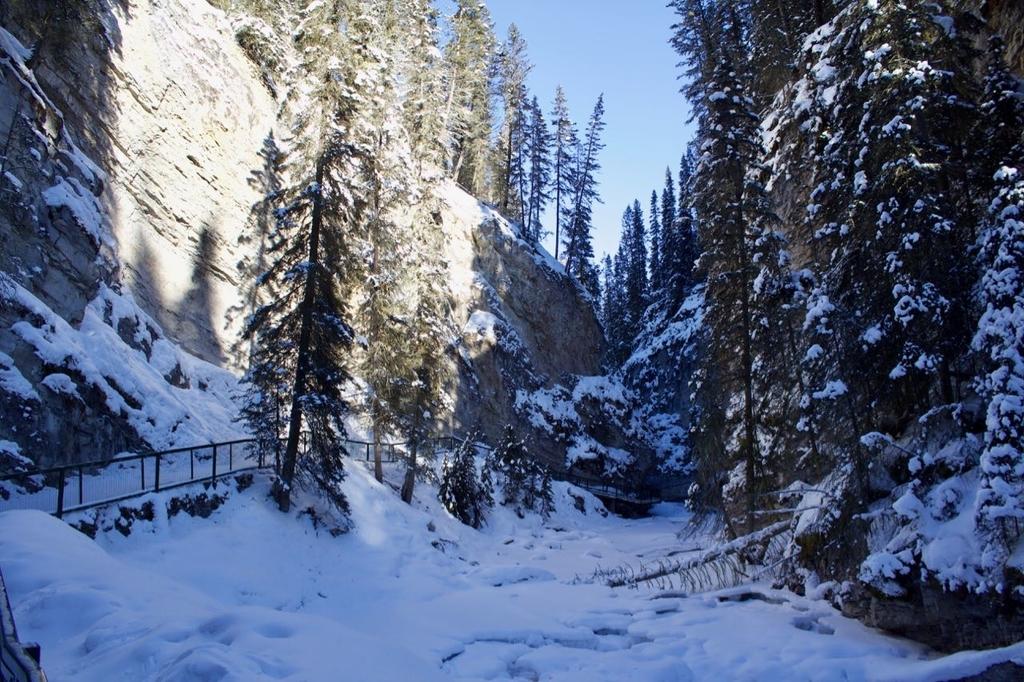 カナダのバンフで冬のハイキングはかなりオススメです