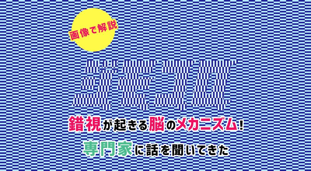 f:id:jpmpmpw:20170112140021p:plain