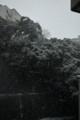 [SIGMA][DP1x]雪、降りましたねぇ