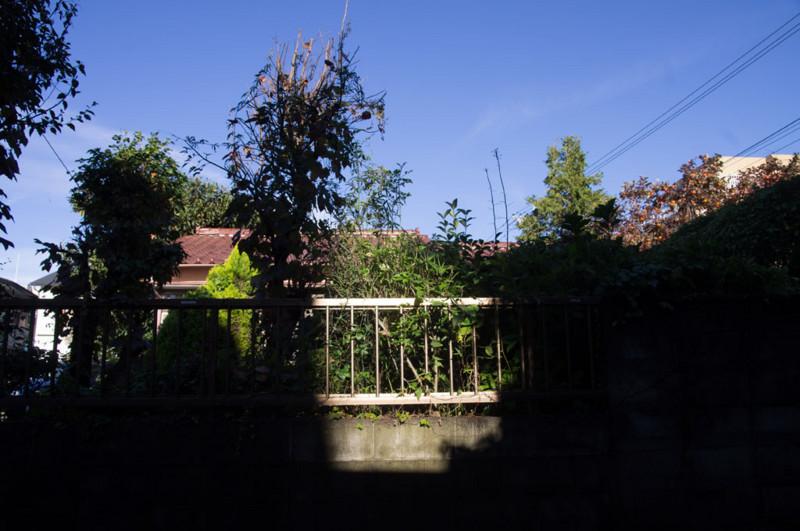 f:id:juangotoh:20111112082017j:plain