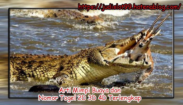 660 Koleksi Nmr Togel Gambar Hewan HD