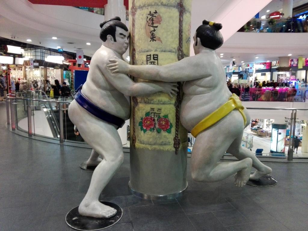 f:id:judo-doctor-traveler:20170409235053j:plain