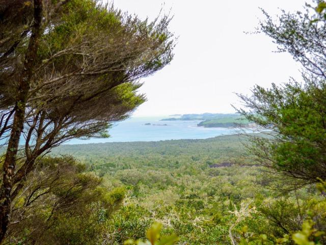 ランギトト島