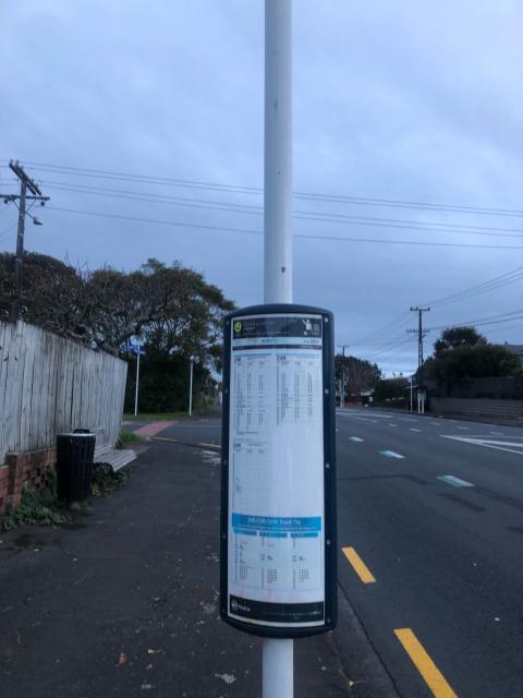 newzealandbus