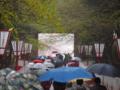 京都新聞写真コンテスト 雨中花見