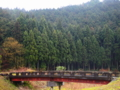 京都新聞写真コンテスト ここに枝垂れ桜が1本あれば、絶景かも。