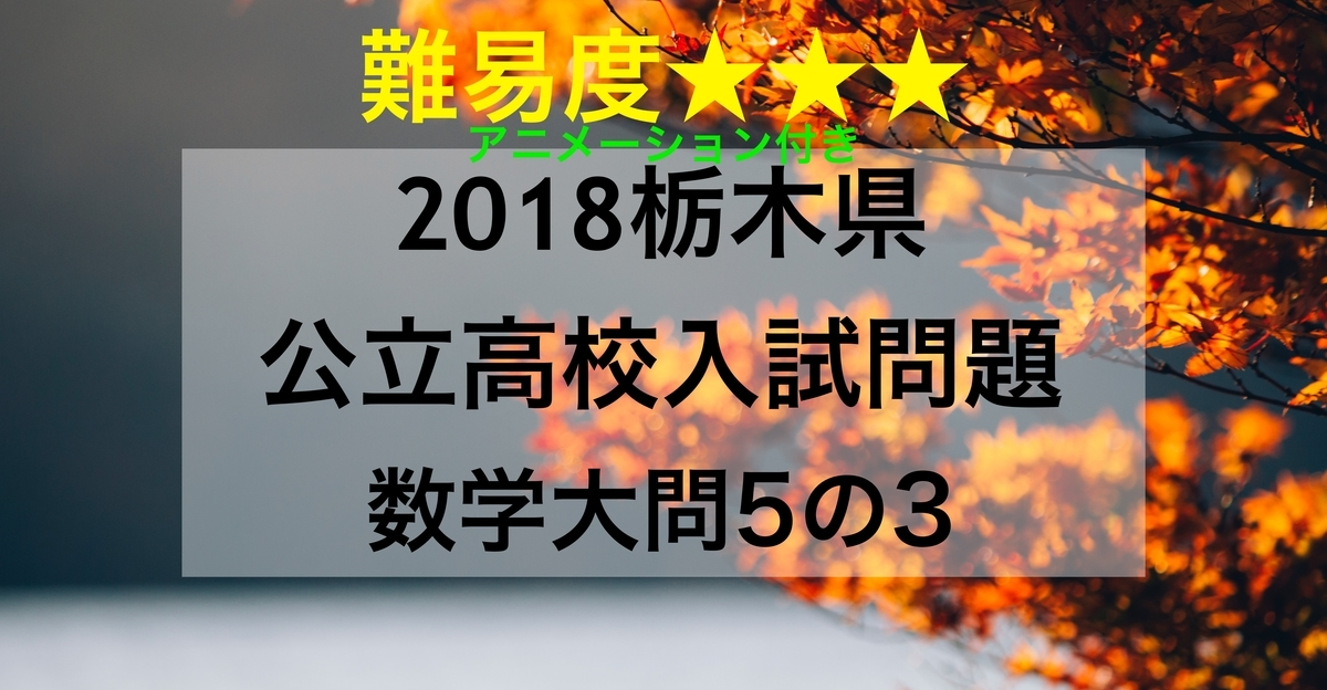 2018栃木数学5_3