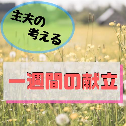 f:id:jun-datsusara:20190218162154p:plain