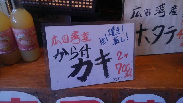 f:id:jun-oyabe:20170510110906j:image