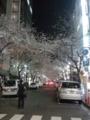 【2011/4/5】 八重洲の桜