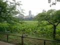 【2011/6/20】 不忍池①