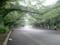 【2011/6/20】 上野公園①