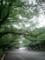 【2011/6/20】 上野公園②