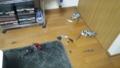 地震の影響・・・。2機大破、1機小破。