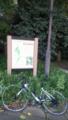 等々力渓谷公園、蚊が多すぎ
